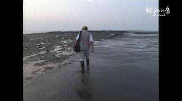 【看當年】2001年桃園大潭藻礁