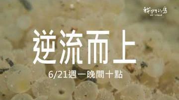 【#預告短片  逆流而上│6/21(一)晚間十點│公視我們的島】