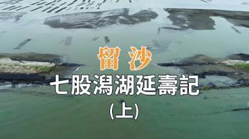 【搶救沙洲】留沙(上) 七股潟湖延壽記 (我們的島 1120集 2021-08-30)