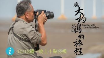 【#節目預告 #與大杓鷸的旅程│10/18(一)晚間十點│公視我們的島】