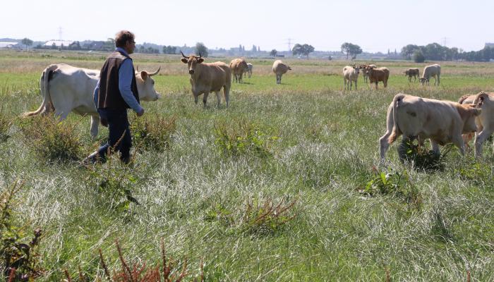 揚・海爾耶在阿默斯福特市郊打造一座生態農場