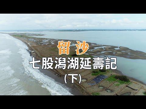 【搶救沙洲】留沙(下)|七股潟湖延壽記 (我們的島 1120集 2021-08-30)