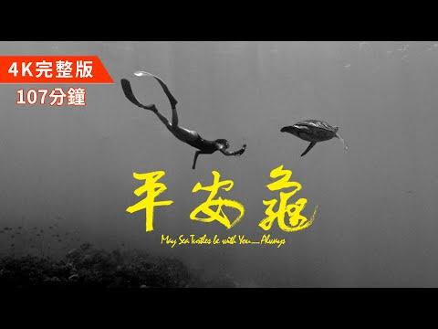 【#平安龜完整版107分鐘|滿滿的海龜放送💦|中英字幕4K紀錄片】May Sea Turtles Be with You … Always